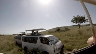 Safari Masai Mara Game Reserve - Kenya 2016 - Gopro 1080p 30fps