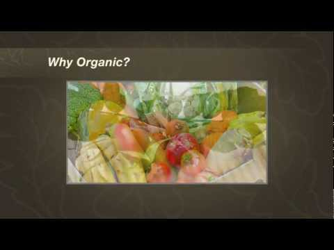Organic Skin Care Wholefood Nutrition