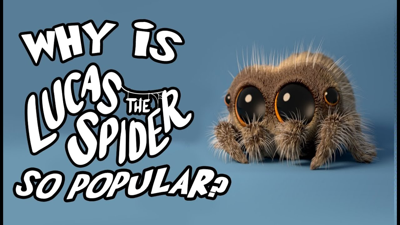 """Download Why Is """"Lucas the Spider"""" So Popular?"""