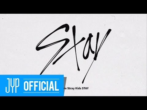 "Stray Kids FANDOM NAME ""STAY"""