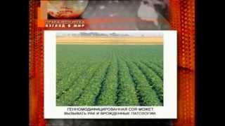 Права человека, Беларусь. ГМО - орудие массового уничтожения. 21.08.2011г.