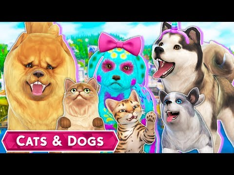 EXPLORING CREATE A PET!🐱🐶 // The Sims 4 | Cats & Dogs – CUTE PUPPIES & KITTENS, RAINBOW PETS🌈