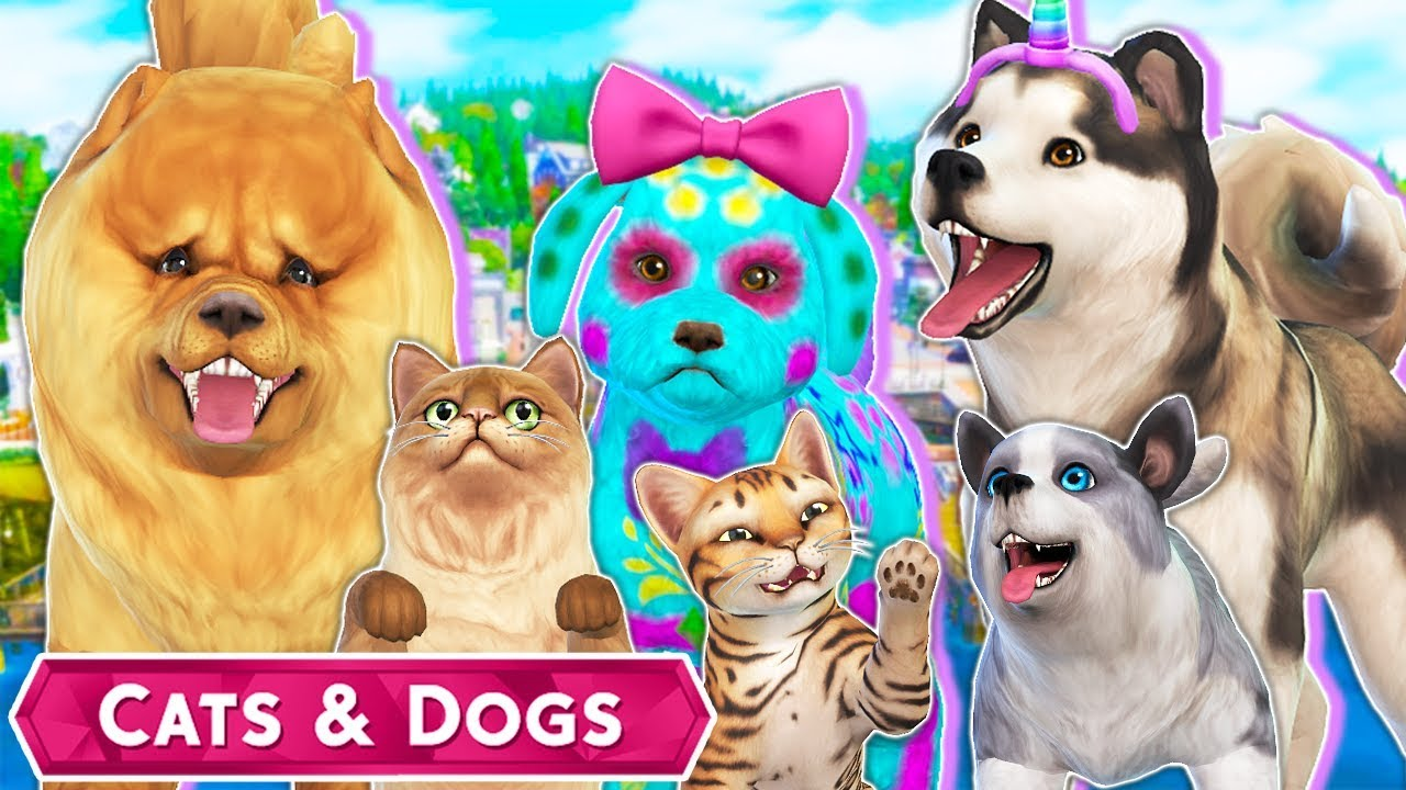 Origin Cats And Dogs  Hours Early