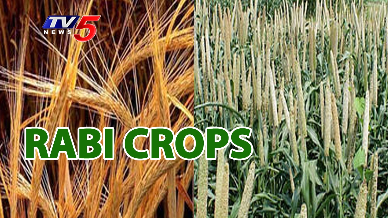 rabi crops The difference between kharif and rabi crops can be drawn clearly on the following grounds: kharif crops refer to the crops sown in south asian countries with the beginning of the rainy season on the other extreme, rabi crops imply the crops that are grown when the rainy season is over and the winter season begins.