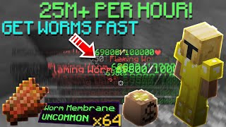 How to make 25m+ pęr hour from lava fishing! Get worm membranes fast!   Hypixel Skyblock