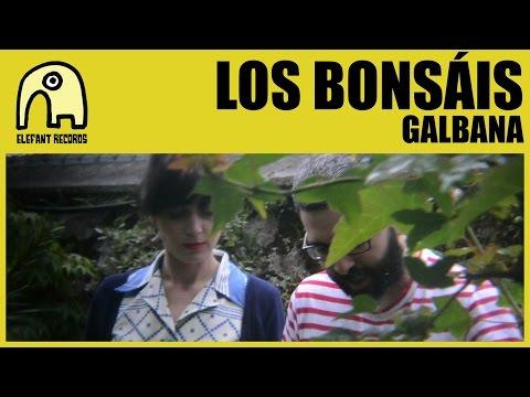 LOS BONSÁIS - Galbana [Official]