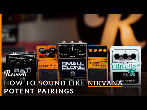 Nirvana Guitar Tones with 5 Cheap Pedals  Reverb Potent Pairings