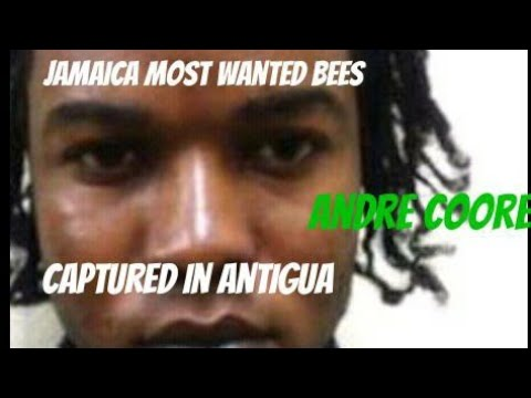 (breaking news)Jamaica most wanted captured in Antigua(may 13-2018)