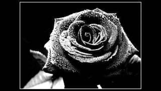 Les yeux noirs - Elisabeth Anais