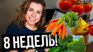 Изменение пищевого поведения за 8 недель