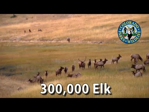 Colorado Parks And Wildlife - 2012 - 15 Second Big Game Commercial