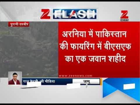 BSF jawan killed as Pakistan violates ceasefire along LoC   बीएसएफ जवान शहीद