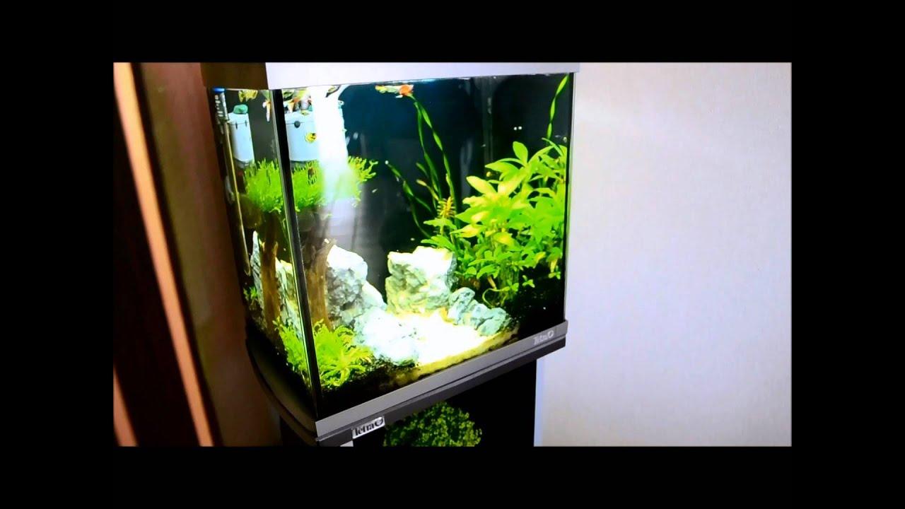 tetra aquaart led aquarium komplett set 60 l wei prima. Black Bedroom Furniture Sets. Home Design Ideas