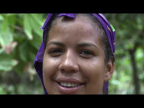 CACAO VENEZUELA SU HISTORIA  / Capitulo 3 de 5