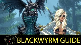 [Blade and Soul] Guide: Blackwyrm (Blade Master Tanking)
