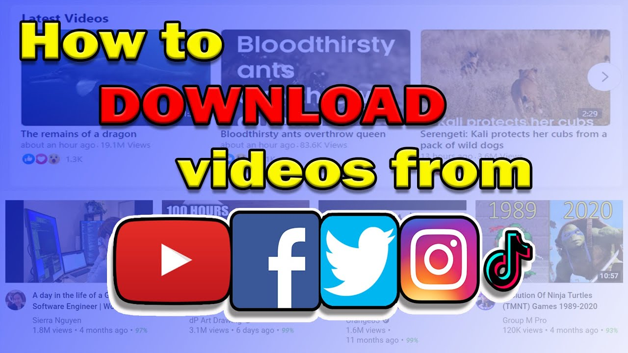 How to DOWNLOAD Videos From Social Media Networks