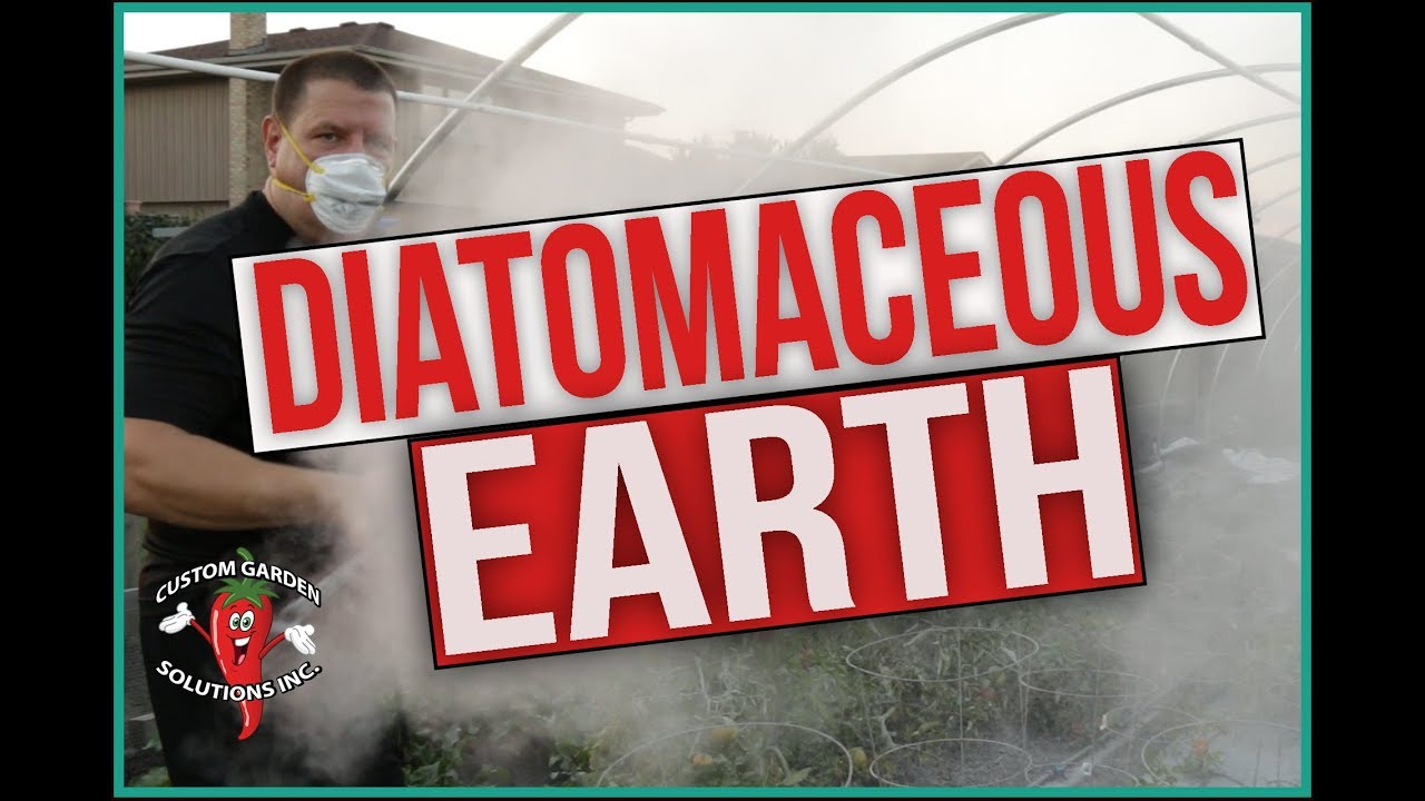 Diatomaceous earth in the garden what is de and how to - How to use diatomaceous earth in the garden ...