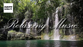 Relaxing Music. Chilled Acoustic Indie Folk Instrumental Background Music Loop.