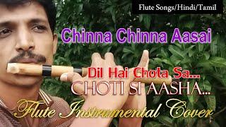 Chinna Chinna Aasai Flute Instrumental Cover