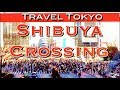 Shibuya Scramble Crossing Tokyo & HACHIKO the World's Most LOYAL Dog!