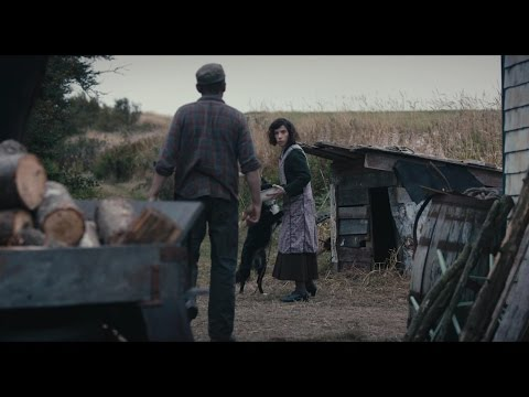 "Sally Hawkins/Ethan Hawke MAudiE (2016) clip ""Feeding the dogs"""