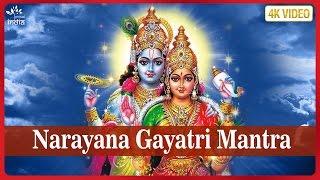 Om Narayanaya Vidmahe Vasudevaya Vishnu Gayatri Mantra Brahman Chanting Bhakti Songs Hindi.mp3