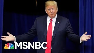 President Donald Trump's Gut Might Be Even Smarter Than His Brain | All In | MSNBC