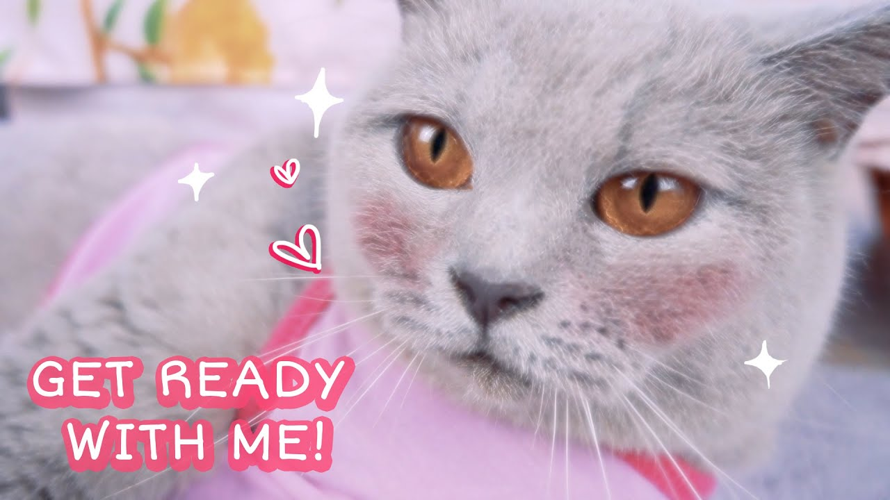 Get Ready With Me in Meowing Day - Everyday Makeup - Nail Art Kucing - Cia Cat Diary