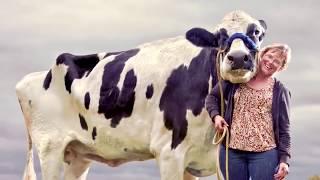 10 Abnormal Große Tiere die es wirklich gibt