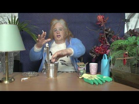 Download Gerrie's vlog: je tuin zaadvrij - DINO.
