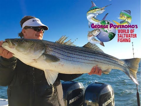 2018 - Episode 10 - Atlantic City, New Jersey, Striped Bass!