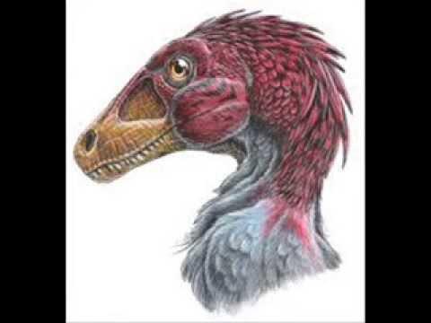 tributo ai dromaeosauridae