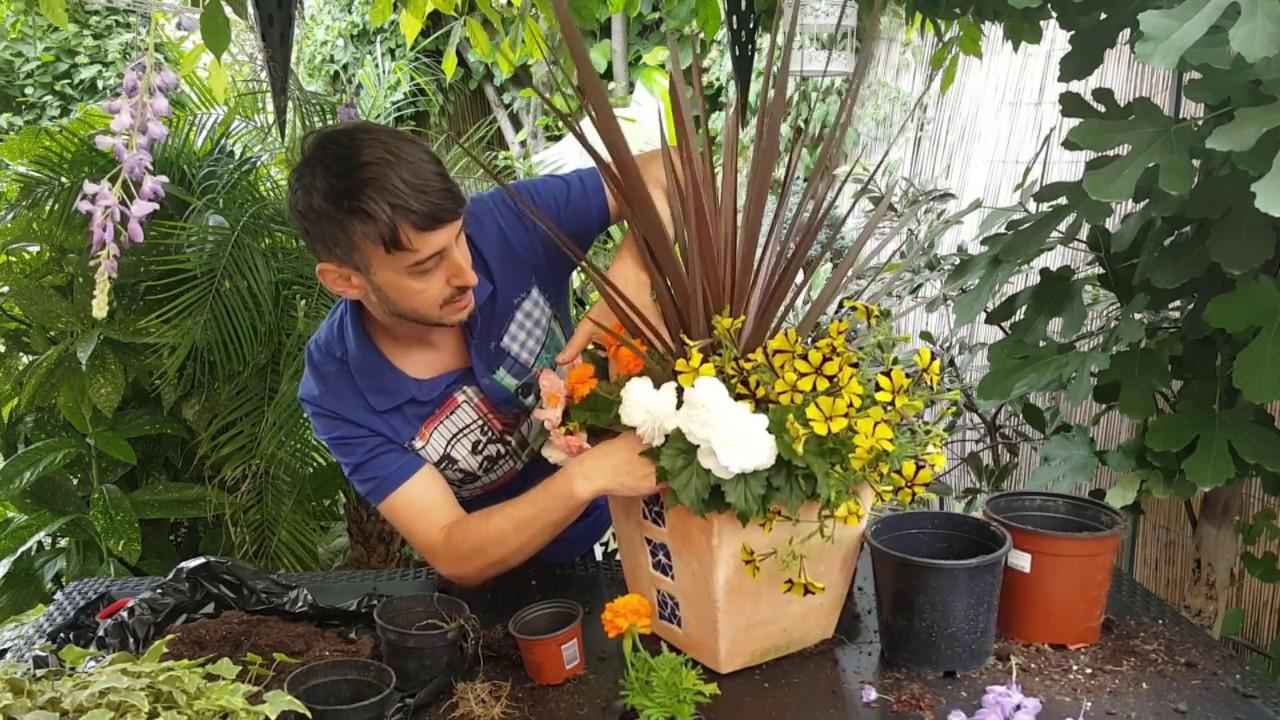 Uite Cum Poti Realiza Un Aranjament Floral Rezistent La Seceta Youtube