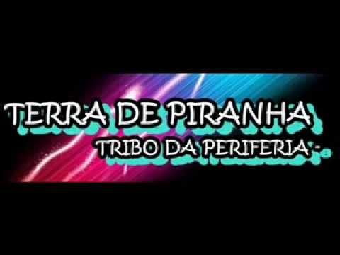 TRIBO DA PERIFERIA (part 3 UM SÓ) - TERRA DE PIRANHA