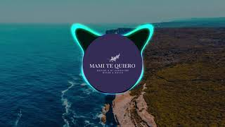 Dezine - Mami Te Quiero Ft Diyun & Kayla ( DJ TarzXiide Remix)
