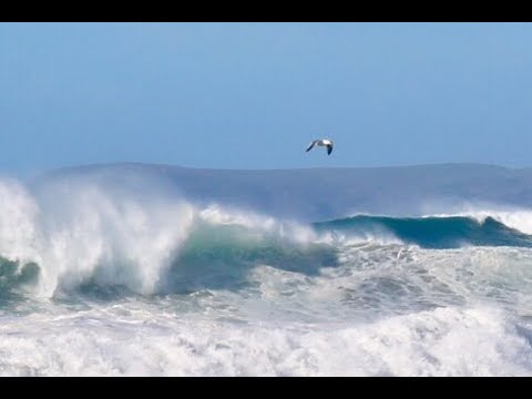 My view of 25-30' Wave Day in Morro Bay