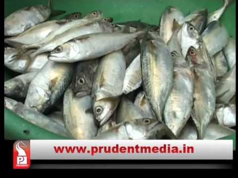 Prudent Media  konkani News 21 April 17 Part 2