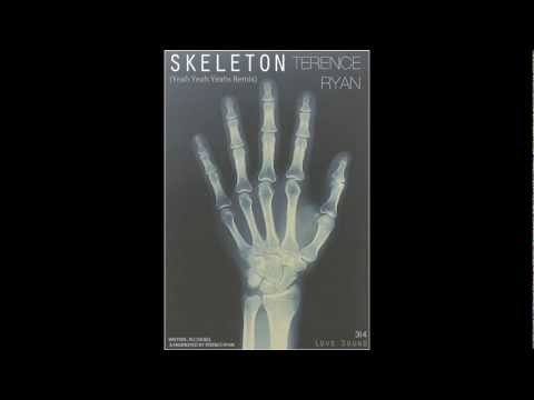 "Terence Ryan | ""Skeleton (Yeah Yeah Yeahs Remix)"" 