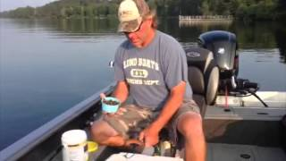 How To Keep Your Live Bait Fresh