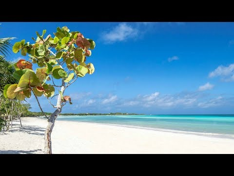 Best Cayo Coco hotels: YOUR Top 10 hotels in Cayo Coco, Cuba