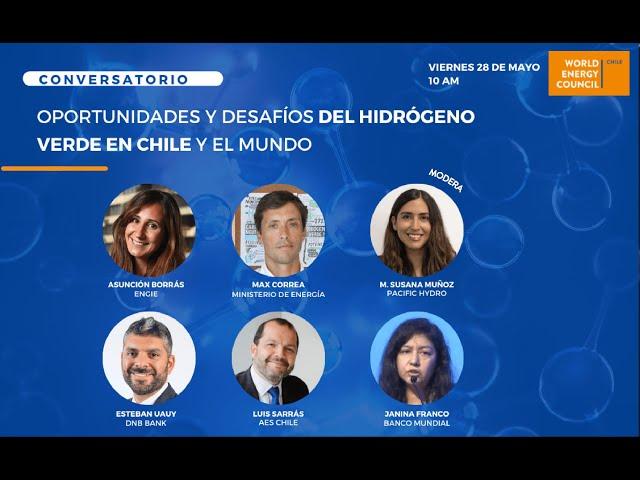 Oportunidades y Desafíos del Hidrógeno Verde en Chile y el Mundo