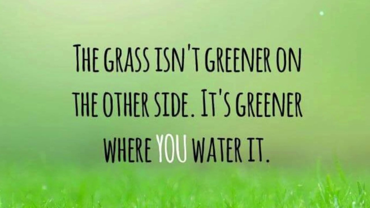 Grass Is Always Greener Quotes: The Grass Isn't Greener On The Other Side From Ray Thomas