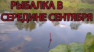 рыбалка поплавочной удочкой на реке в середине сентября