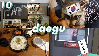 Meeting Suga's Mom & Raccoon Cafe! [DAEGU] // Seoul Travel Log X