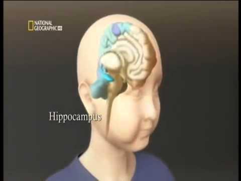 National Geographic: Musica e cervello, effetti benefici.
