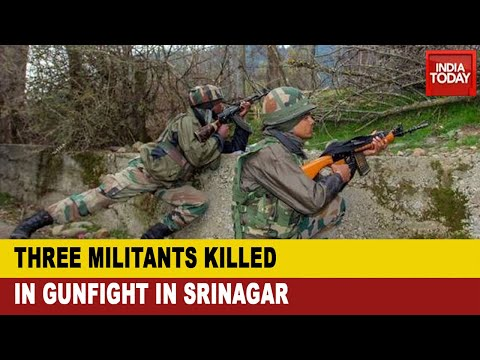 Encounter In Jammu & Kashmir: Security Forces Eliminates 3 Terrorists in Srinagar