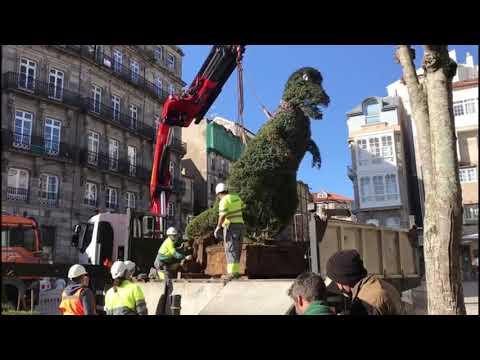 El Dinoseto de Vigo cambia de ubicación por obras en la Porta do Sol