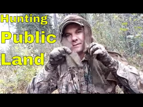 How To Hunt Deer On Public Land With No Scouting (Ground Hunting And Stand Hunting)