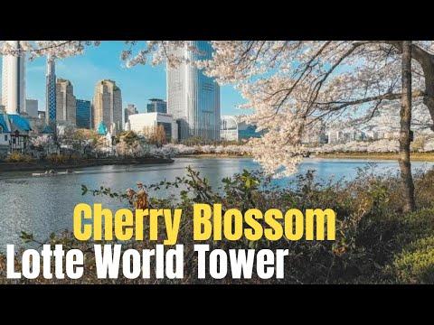 2 - Seokchon Lake(Lotte World Tower)  Cherry Blossom Festival 2018 (석촌호수-공원 벚꽃축제) in Seoul Korea