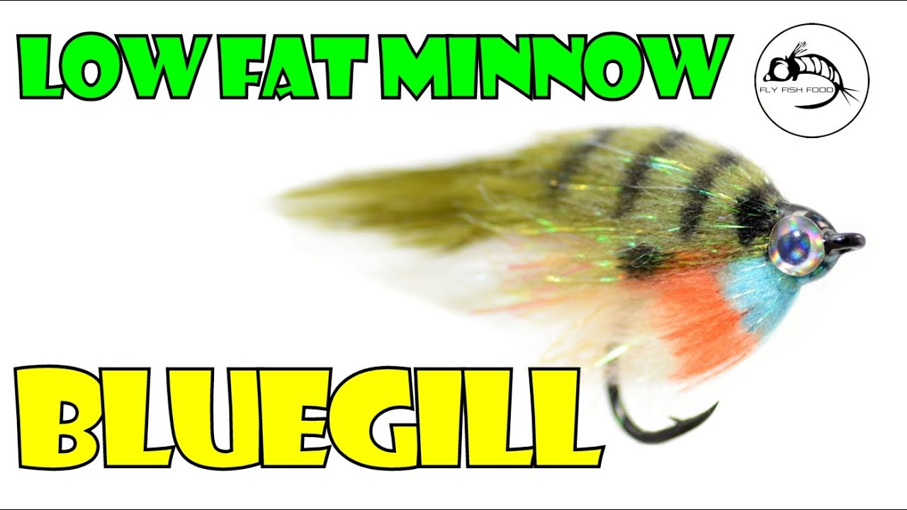 Low fat minnow bluegill by fly fish food youtube for Fly fish food